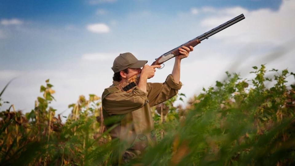 """Calendario venatorio, WWF: """"Errare è umano, perseverare… Sulla caccia la Regione sfida il TAR"""""""