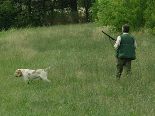Caccia, A.T.C. Sulmona: attività venatoria per la tutela del mondo agricolo
