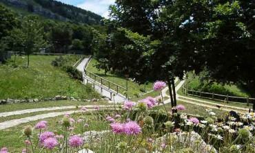 Capracotta, festa del Giardino flora appenninica