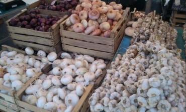 Cipolla re'Sernia e Onion Pride alla fiera d'Isernia del 28 giugno