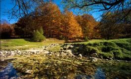 Parco Nazionale d'Abruzzo, incontro a Val Fondillo promosso dal Sindaco di Opi