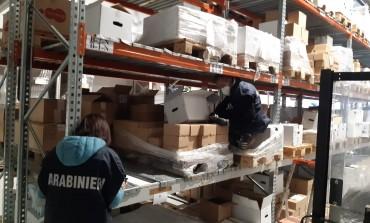 Maxi sequestro, 105 quintali di tartufi e sanzione di 8.600 euro