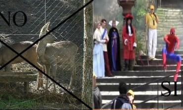 """Castel di Sangro, genitori infuriati: """"Gita scolastica di 200 km per bambini di 3anni?"""""""