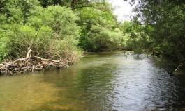 """WWF: """"La gestione dell'acqua in Abruzzo? Oltre il 60% del liquido captato si perde a causa di una rete obsoleta e mal governata"""""""