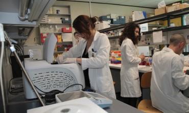 Neuromed, scoperto un nuovo fattore genetico per l'ipertensione