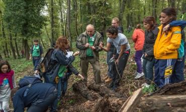 Vastogirardi, Bioblitz 2017: alla scoperta della biodiversità