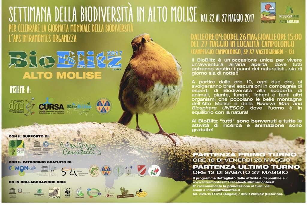 Locandina-BioBlitz-2017-Alto-Molise
