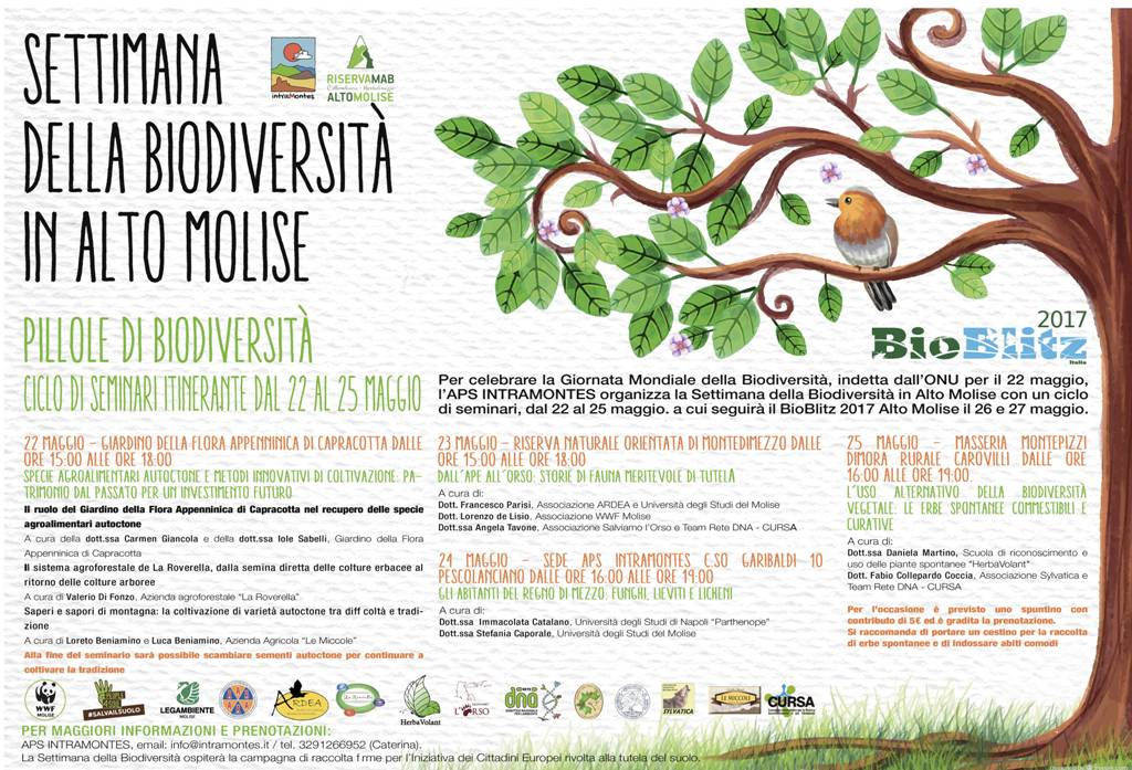 Locandina-Pillole-di-Biodiversità