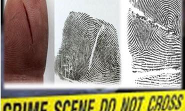La scena del crimine: costituzione della pelle e formazione di cicatrici