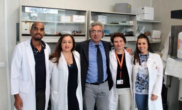 Ricerca Neuromed: la rapamicina normalizza le cellule cancerose