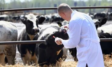 """Asrem, organici precari. Coscienza Civica: """"A rischio le aziende agricole"""""""