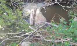 Lago di Barrea, presunti inquinamenti: la denuncia di S.O.A.