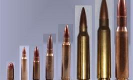 La balistica: aspetti generali, branche di applicazione, armi comuni.
