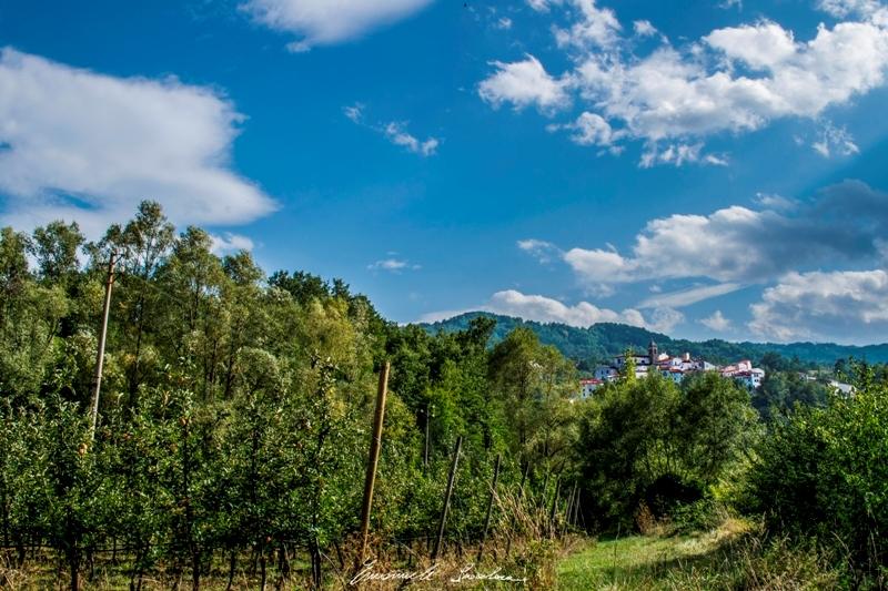 agricoltura a Castel del Giudice - Credit Emanuele Scocchera (1)(1)