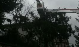 Maltempo in Alto Sangro, allagamenti e alberi sradicati dal vento