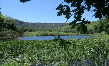 Giornata mondiale delle zone umide, visita guidata all'oasi Wwf delle Gole del Sagittario