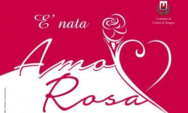 Castel di Sangro, un cuore rosa per l'Alto Sangro