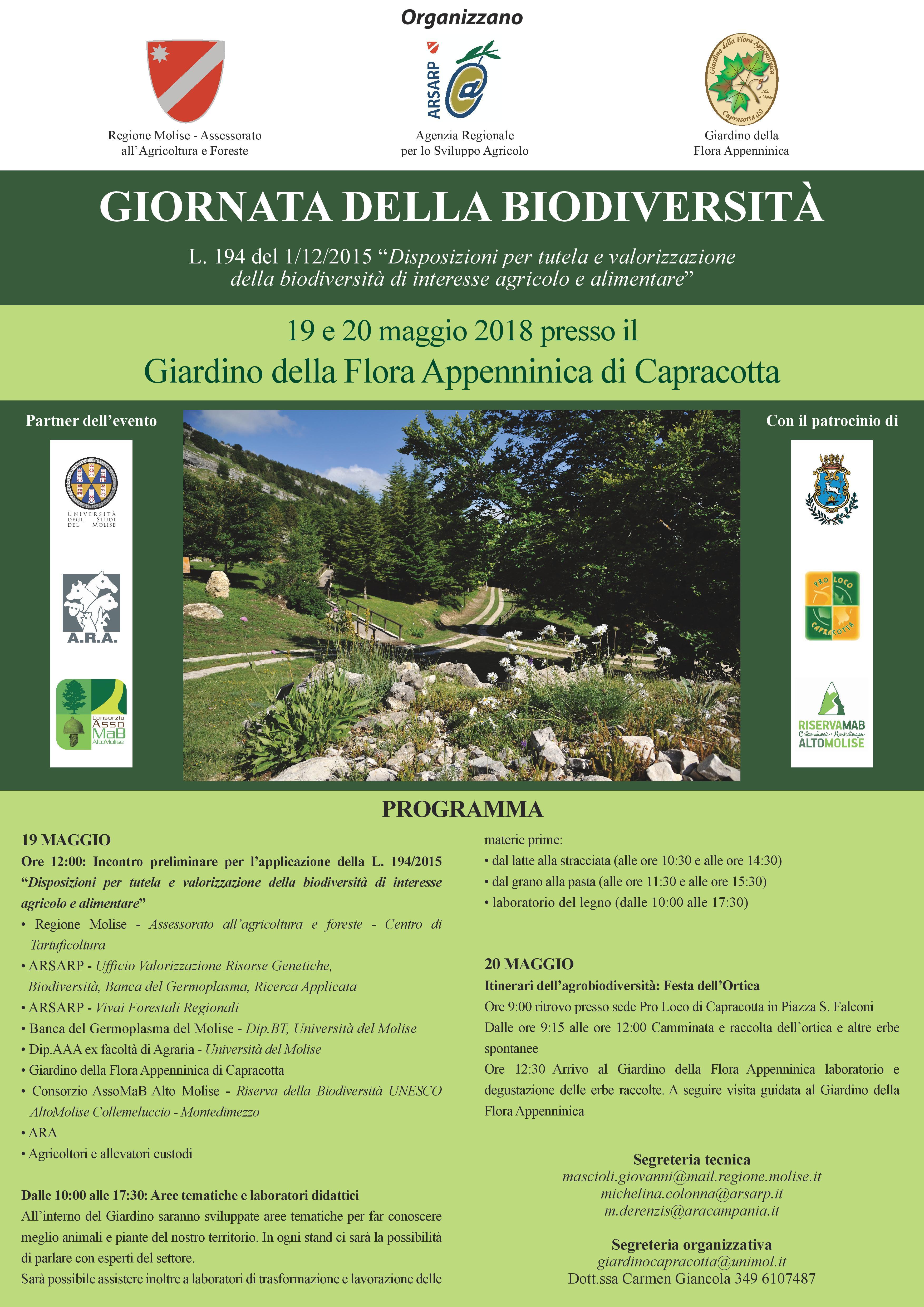 flyer copia(1)-page-001