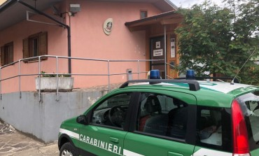 Carabinieri Forestali Castel di Sangro, scarsa tracciabilità: sanzione di 5000 euro ad un apicoltore