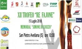 XXII Trofeo 'Re Fajone', tracciato di 11 km: San Pietro Avellana - Castel di Sangro - Vastogirardi
