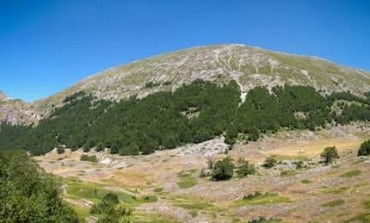Camminiamo la biodiversità, confermati i cambiamenti climatici sugli ecosistemi di alta montagna