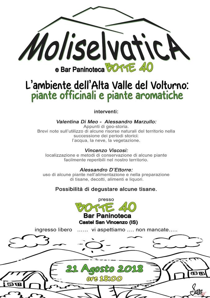 Moliselvatica
