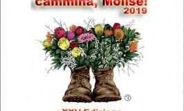 'Cammina Molise', dal 3 all'8 agosto il tour attraverserà 16 paesi delle due province