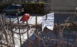 """Pescasseroli, minacce al tecnico del Pnalm Andrea Gennai. Carrara:"""" Atto inqualificabile che colpisce il Parco"""""""