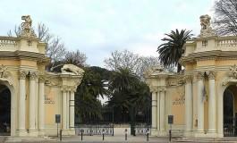 """Al Bioparco di Roma il convegno del WWF """"Insieme per il futuro dell'Orso bruno in Appennino"""""""