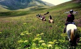 La magia del 'Team Penning' all'Altavia horses di Carovilli, domenica 7 luglio