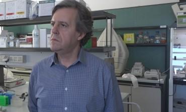 Il ministro Grillo nomina Giuseppe Lembo (Neuromed) membro del gruppo sulla sperimentazione animale