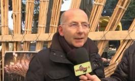 A Nicola Mastronardi il Premio Gaio Asinio Pollione