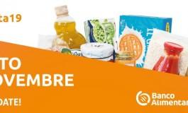 Alto Molise, le attività commerciali di 6 comuni aderiscono alla colletta alimentare