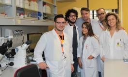 Studio Neuromed, combinazione di sostanze naturali per combattere l'ipertensione