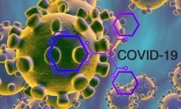 Covid 19, Neuromed attiva numero verde