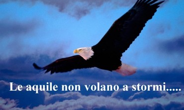 Le aquile non volano a stormi - di Giuseppe Battistella