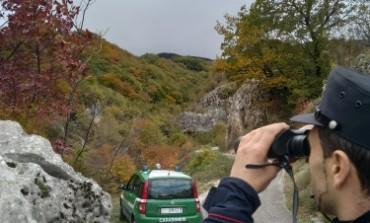 Uccidono un capriolo: due bracconieri scoperti e denunciati dai Carabinieri Forestali
