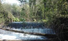 Vacanze in sicurezza e tra la natura nel borgo di Castelpizzuto