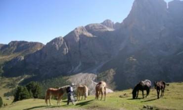S.O.S. Parco regionale Sirente Velino, appello alla Regione Abruzzo di importanti personalità