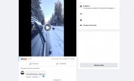 Orsa con cuccioli a Pescasseroli ma il video è stato girato nel parco di Yellowstone