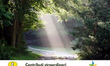 Contributi straordinari per Zone Economico Ambientali: al via le domande dal 15 febbraio