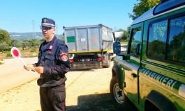 Abbandono rifiuti speciali in una scarpata: quattro denunciati dai Carabinieri Forestali