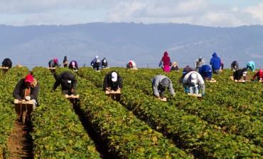 """Caporalato e Agromafie, al """"Serpieri"""" si coniuga l'agricoltura con la legalità"""