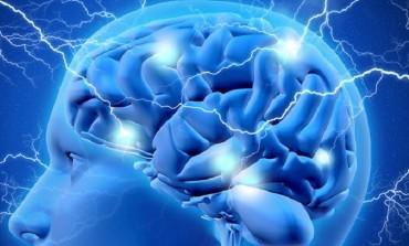 Neuromed: Crisi epilettiche, verso un sistema automatico di rilevamento