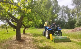 """Patentino mezzi agricoli e forestali, gli studenti dell'Istituto Agrario """"A. Serpieri"""" sul trattore"""