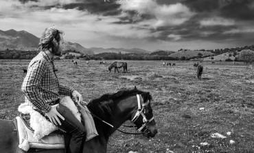 Montenero Val Cocchiara: nel Pantano Zittola il cavallo Pentro vive allo stato brado, nessun degrado