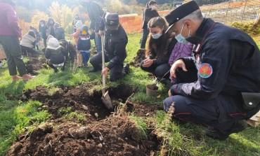 """La scuola Primaria di Alfedena pianta un """"bosco diffuso"""" con i Carabinieri Forestali"""