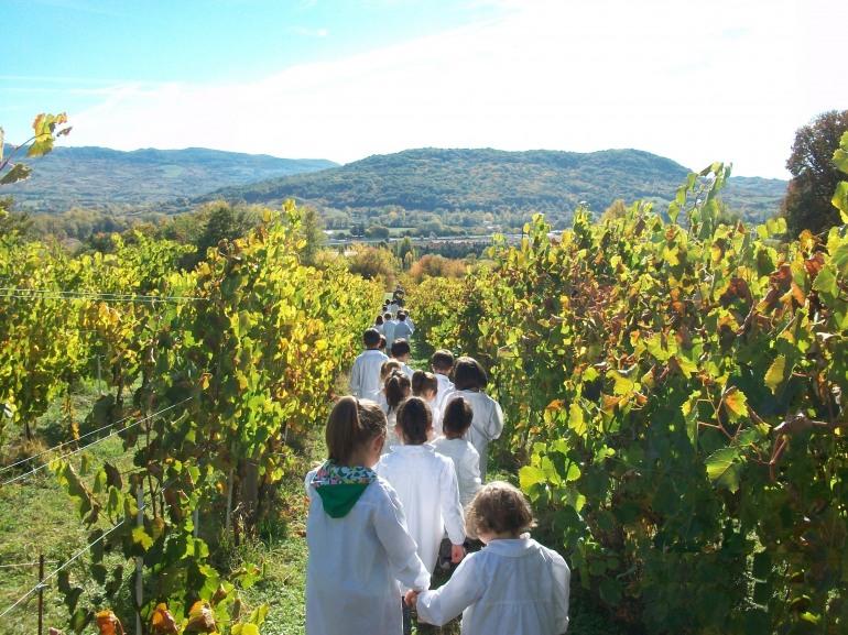 Castel di Sangro, la scuola Amedeo Giannini visita Casadonna