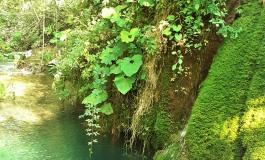 Le cascate del Volturno: un salto nel Molise