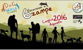 L'estate di 'Parnassio' a Castel di Sangro: corsi di primo soccorso e dogwalking